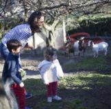 3 Santa Klara Zumaia cabras auntzak goat 3