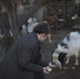 8 Santa Klara Zumaia cabras auntzak goat 2
