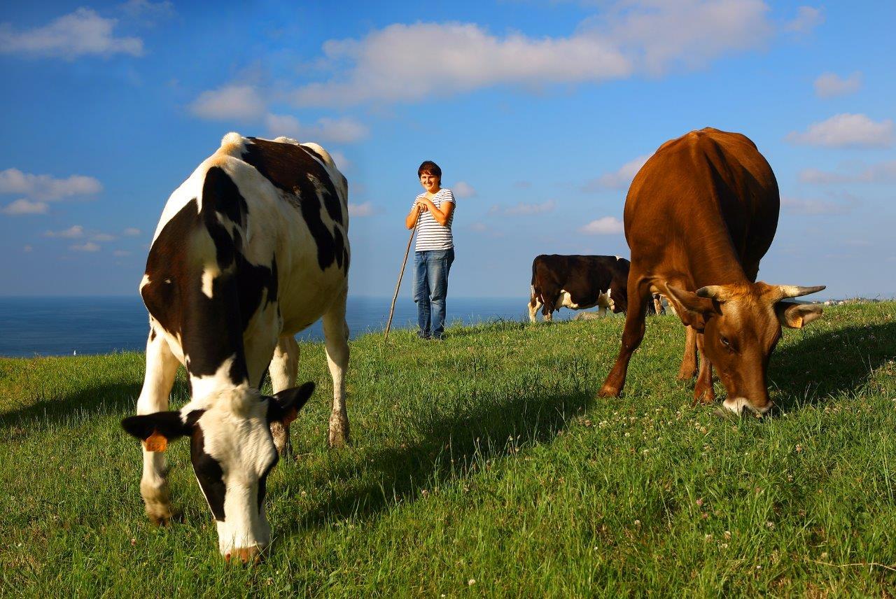Actividades en familia, Agroturismo Santa Klara